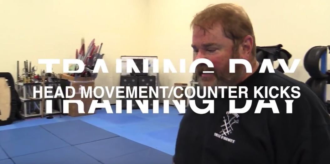 Training Day: Head Movement / Counter Kicks